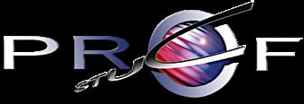 Profstuc Stucadoorsbedrijf logo